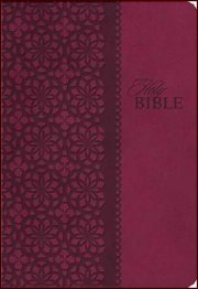 King James Study Bible Cranberry Leather-soft