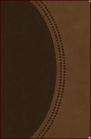 KJV Personal Size Giant Print Reference Bible Chocolate Brown Le