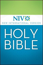 NIV Version Bibles