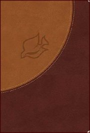 NIV New Spirit-Filled Life Bible Butterscotch/Auburn Leathersoft